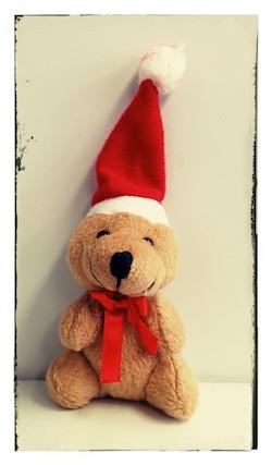 weihnachtsbaer